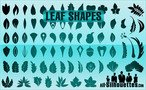 74 Vector Leaf Shapes