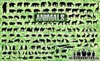 150 Free Vector Animals