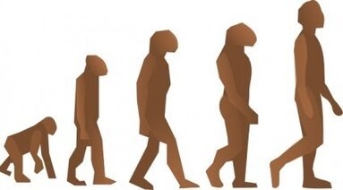 Evolution Steps