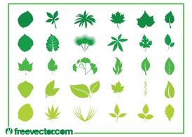 Leaves Graphics Set