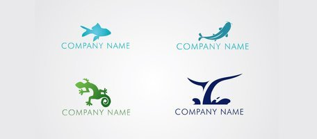 4 Fish Whale Tail Gecko Logos Logotypes