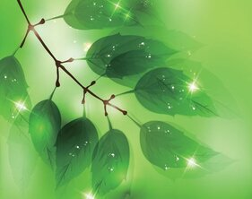 Green Leaf Branch Background