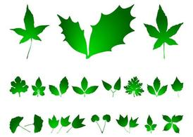 Leaves Graphics Pack