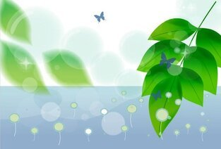 Butterfly and Green Leaf Nature Background Vector Free