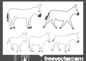 Donkeys Graphics