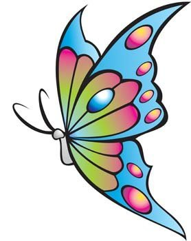 Butterfly Vector 15