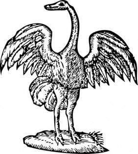 Bird Engraving