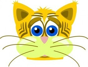 Peterm Sad Tiger Cat