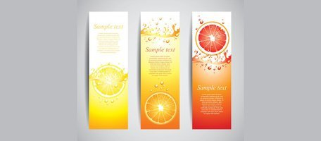 3 Juicy Citrus Slice Splash Vertical Banners Set
