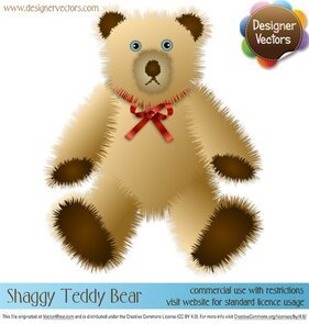 Shaggy Teddy Bear