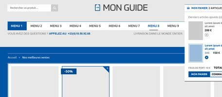 Mon Guide Mobile E-commerce Basket