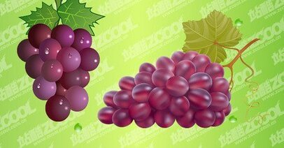 2 bunch of grapes