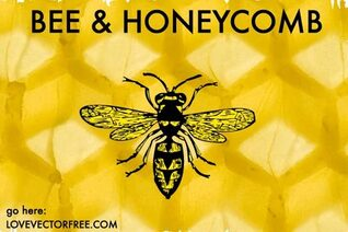 Free Vector Bee and Honeycomb