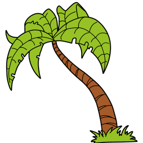 Palm Tree Stock