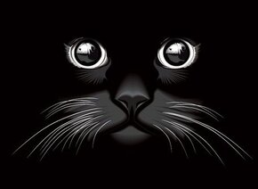 Chat noir yeux Vector Background (gratuit)