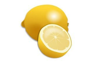 Fresh Lemon and Lemon Slice Realistic Vector