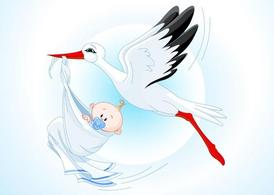 Stork Baby Cartoon