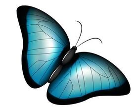 Stylish Blue Butterfly