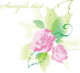 Beautiful Roses Greeting Cards 05