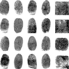 Fingerprint Vector 4