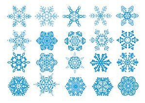 A wide variety snowflake