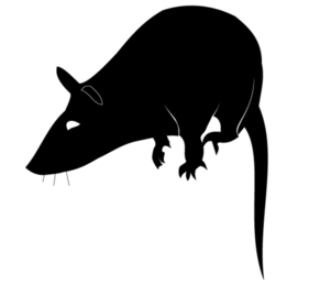 Rat Silhouette Vector Free