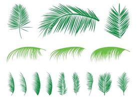Palm Leaves Silhouetten Set