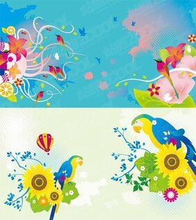 Colorful bird theme
