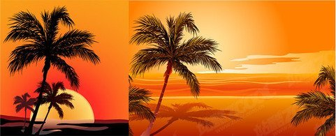 Coconut Beach Sunset Shadow Vector Coconut