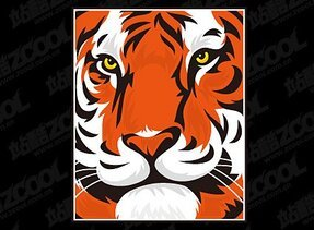 Tiger head close-Vector material