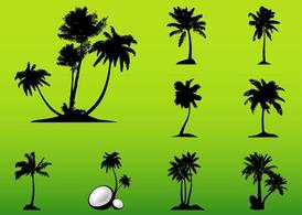 Vector Palm Trees