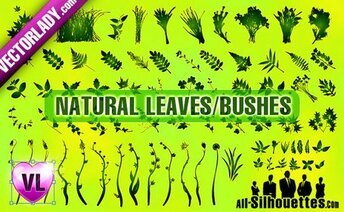 73 Natural Leaves & Bushes