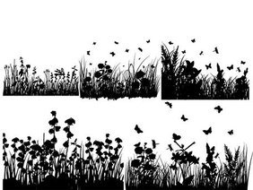 Several grass and butterflies silhouette