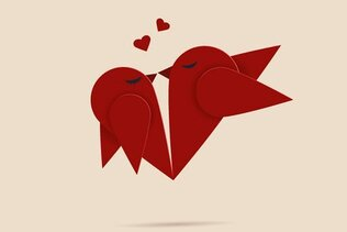 Cute Love Bird Vector Illustration (Free)