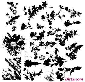 Floral Silhouette Vector Pack kostenlos