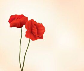 Red Poppy Flower Vector Illustration (Free)