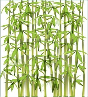 Bamboo Background 1