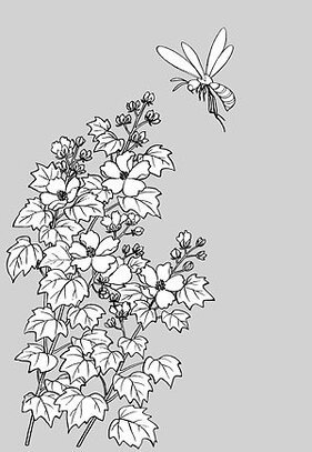 Japanese line drawing of plant flowers vector material -15 (