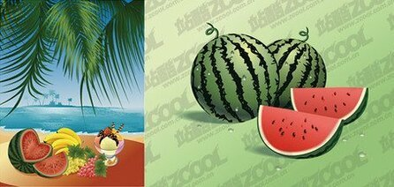 Vector material sea fruit feast