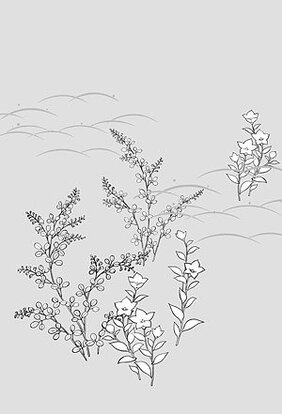 Japanese line drawing of plant material -3 Flower Vector (Ca