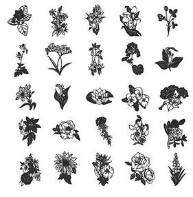 Line drawing flowers of various elements of