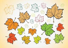 Leaves Vectors