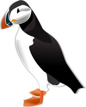 Puffin Md