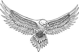 Vector Line Drawing Of The Eagle