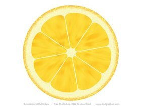 Fruit illustrations, lemon and orange icons