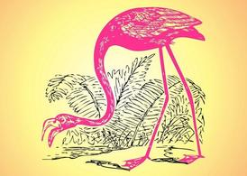Flamingo skiss