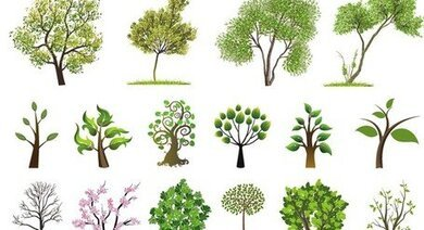 Compilation of Trees