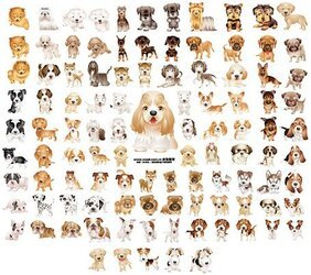 105, paragraph adorable puppy version of