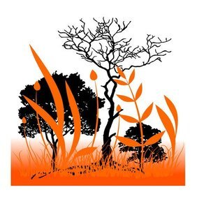 ORANGE AND BLACK NATURE VECTOR BACKGROUND.eps