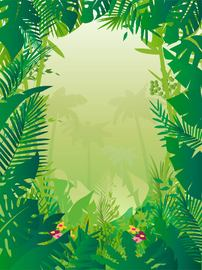 Tropical Frame Styled Jungle Background